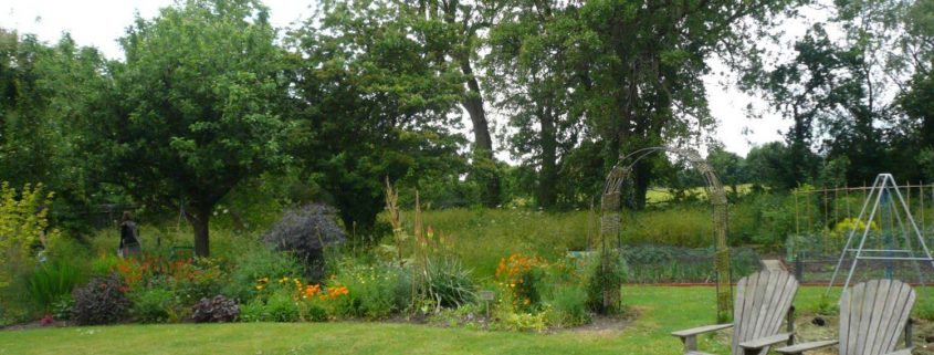 garden-number-10