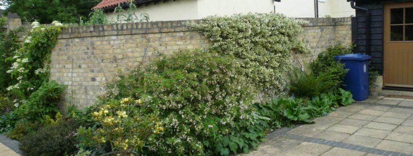 garden-number-11