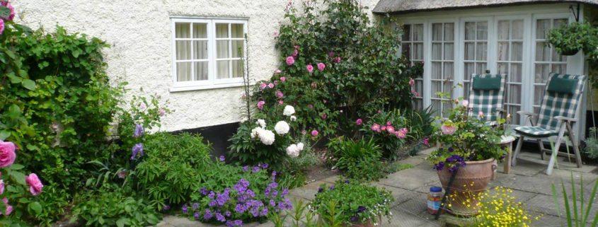 garden-number-12