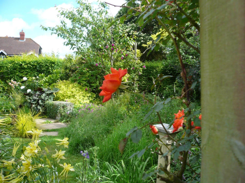 Garden number 6