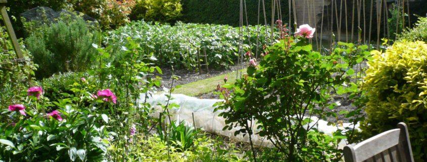 garden-number-7