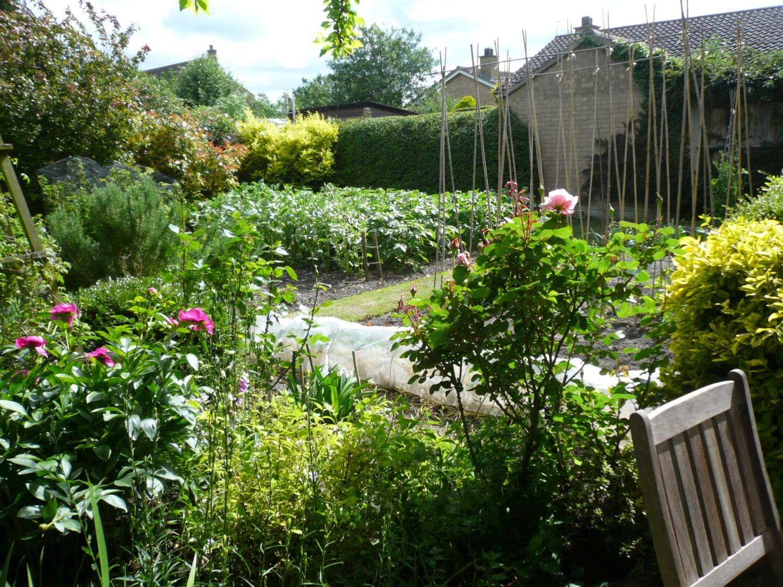Garden number 7