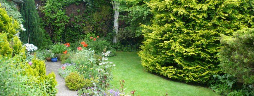 garden-number-9