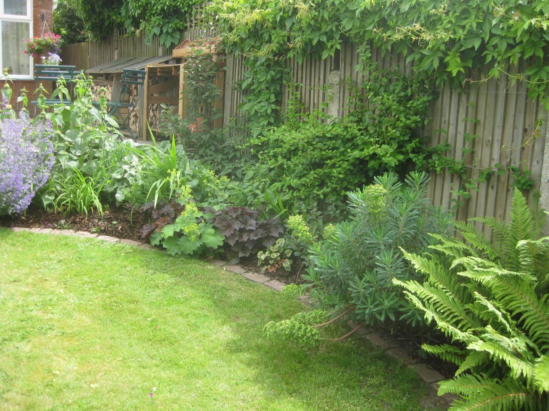 Garden number 9
