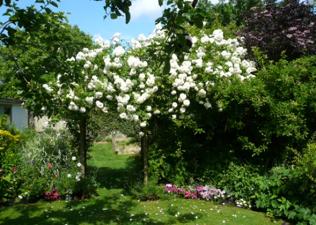 Guilden Gardens 01