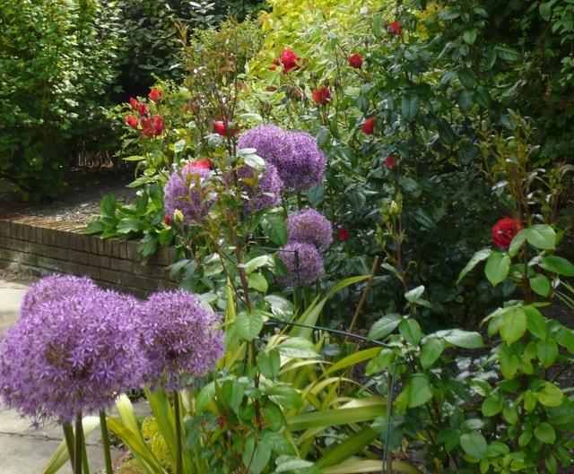 Guilden Gardens 03 - 2
