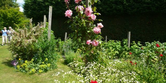 guilden-gardens-10-2