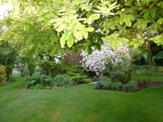 Guilden Gardens 11