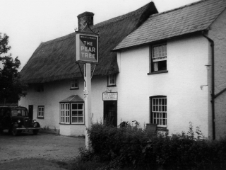 The Pear Tree Then