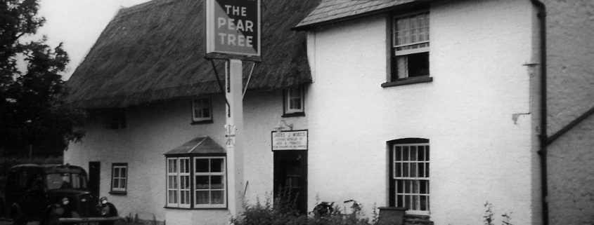 The-Pear-Tree-Then
